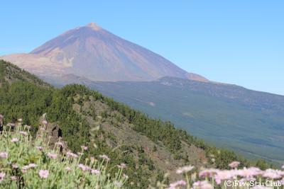 テイデ山の画像 p1_23