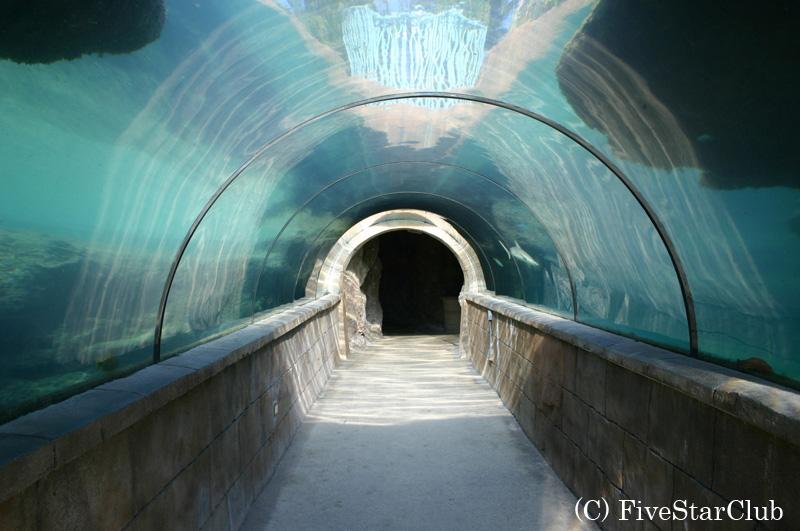 H.アトランティス・パラダイス・アイランドホテル内の海底トンネル