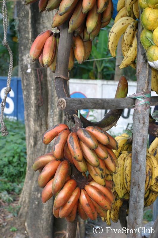 ケララ名物赤いバナナ