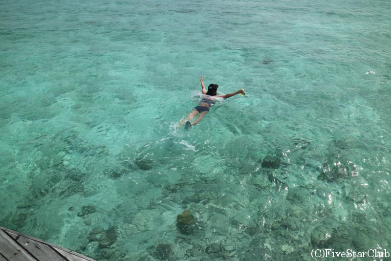 綺麗な海を独り占め!