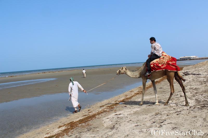 GURGUSMビーチ/ラクダ乗りも楽しめる