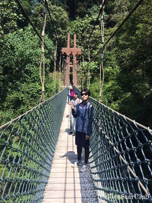 ウル・トゥンブロン国立公園キャノピー