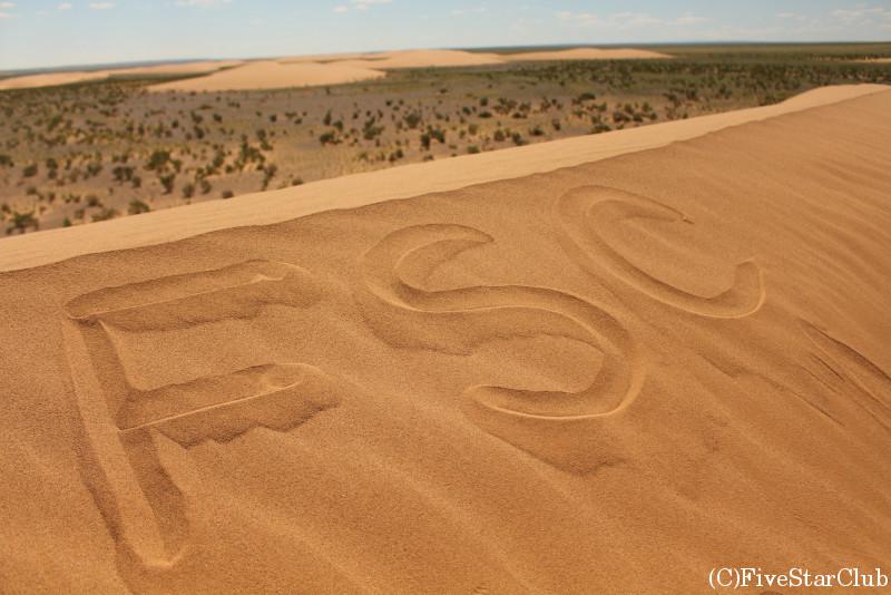 モルツォク砂丘 FSC