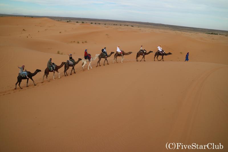 ラクダで砂漠を移動