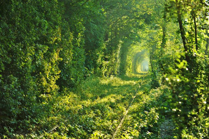 愛のトンネル(クレヴァン)