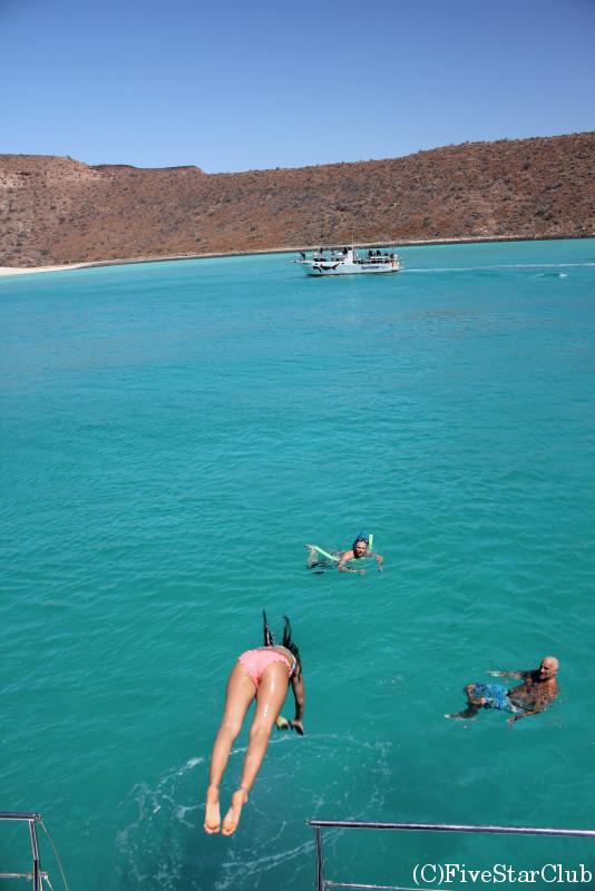 アシカ・シュノーケリングクルーズ 無人島ビーチでフリータイム