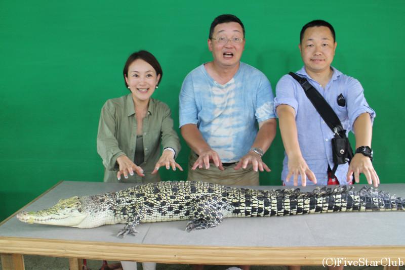パラワン野生生物保護センター/ワニと写真を撮る
