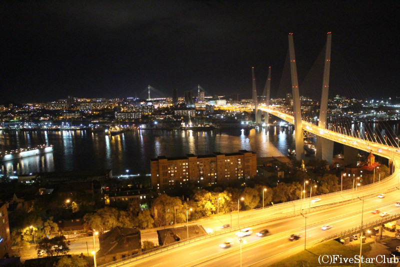 鷲の巣展望台から見た黄金橋(夜景)