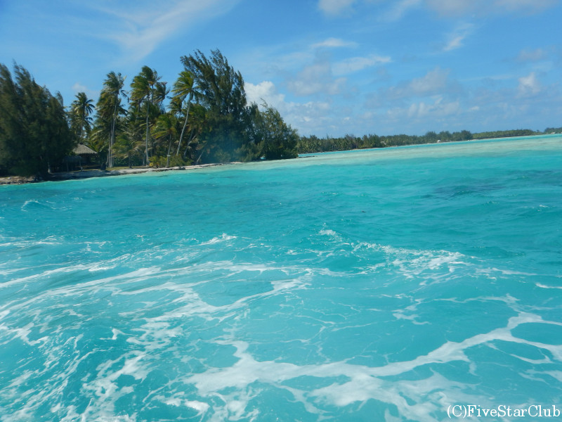 サメとエイウォッチングツアー/見渡す限り透き通った様々な青の海が広がる