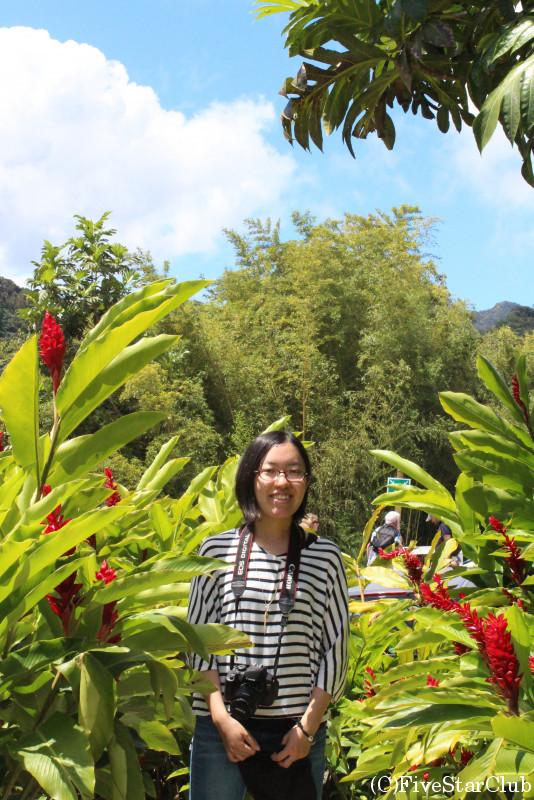 バラタ植物園にて