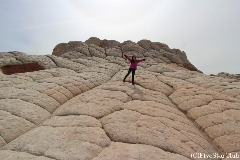 大きな亀の甲羅のような岩