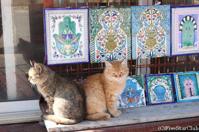 みやげ物と猫