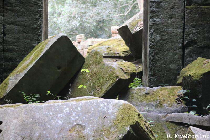 タプローム、苔むす岩