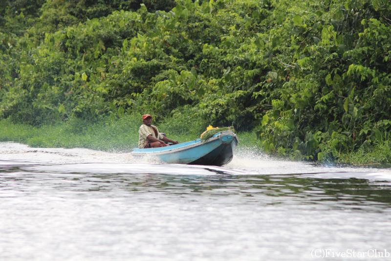 デマラ川野鳥観察クルーズツアー