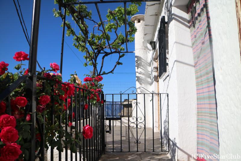小さな白い村ブビオン 白い壁と植物が美しい素朴な村