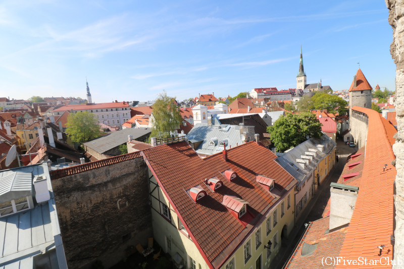 旧市街/ヘレマン塔(城壁からの眺め)