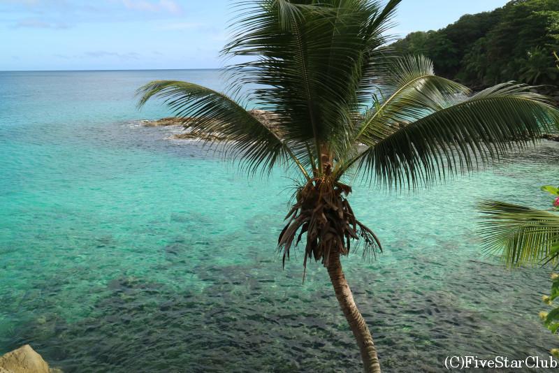 マヘ島のビーチ