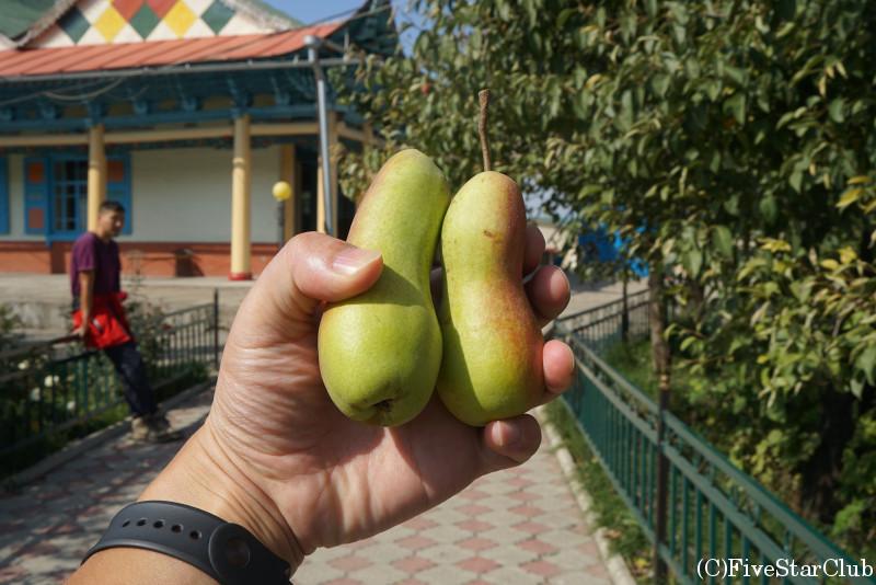 ドゥンガンモスクでもらった梨