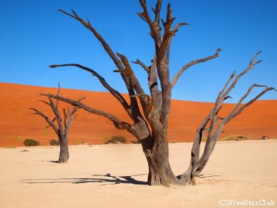 ソッサスフレイ大砂丘/デッドブレイ(ナミブ砂漠)