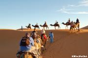 ラクダに乗って砂漠のど真ん中へ(サハラ砂漠)