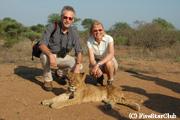 仔ライオンと一緒にウォーキングサファリ