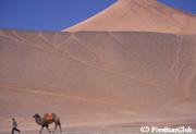 トルファンの砂漠にて