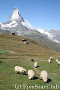 マッターホルンと羊