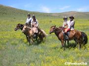 草原で乗馬体験