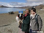 羊とチベットのおばあちゃん(ヤムドゥク湖)