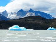 グレイ湖とパイネ山と流氷