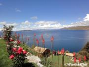太陽の島からチチカカ湖を眺望