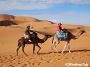 ラクダに揺られて砂漠のど真ん中へ