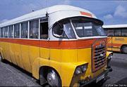 """""""トトロ"""" のねこバスのようなマルタのバス (マルタ島)"""