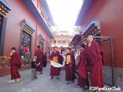 チベット難民キャンプの寺院にて