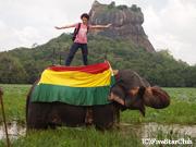 シギリアロック周辺で象乗り体験