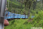 キャンディ~ナーヌオヤ間の列車/車窓風景