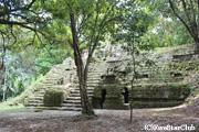 鬱蒼としたジャングルにあるティカル遺跡