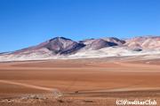 ダリの砂漠