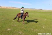 大草原で乗馬体験(ウンドゥルドブ)