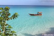 ザンジバル北端ヌングイのビーチ
