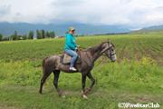 アシュ村と周辺/丘の周りを乗馬体験