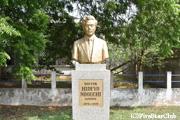 コルレブ病院にある野口英世記念館 日本庭園