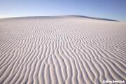 ホワイトサンズ国定公園 朝のAlkali Flat Trail